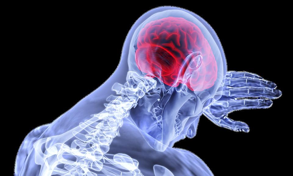 Жирные кислоты необходимы для четкой работы головного мозга.