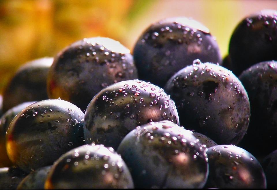 При соблюдении органической диеты в основную часть рациона включайте побольше овощей и фруктов, полезных витаминами и минералами.