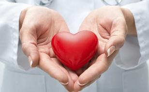 Одной из основных причин сердечно-сосудистых нарушений по-прежнему считают атеросклероз – заболевание
