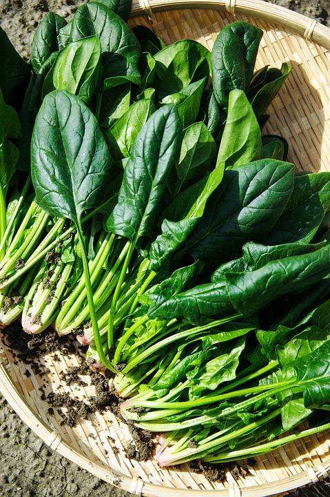 Весной доступен также шпинат